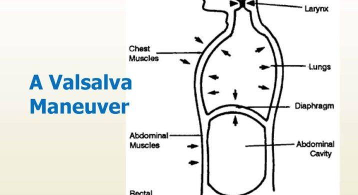 How The Valsalva Maneuver Works
